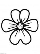Раскраска для маленьких Цветок. Распечатать
