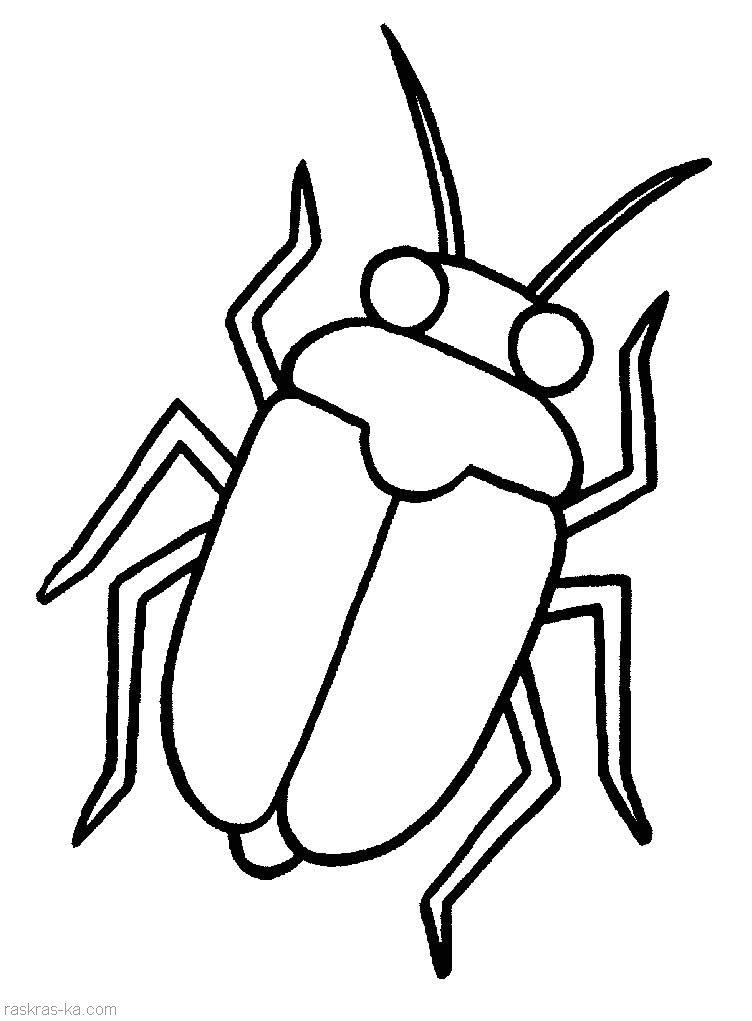 Раскраски детям насекомые
