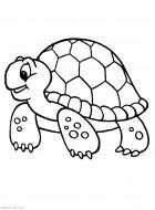 Черепаха. Раскраска оживотных для самых маленьких