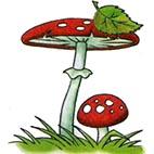 Раскраски грибы. Мухомор