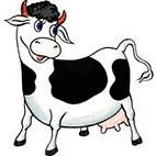 Раскраски коровы, бычки, телята
