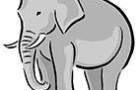 Раскраски слоны