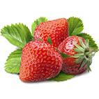 Раскраски ягоды. Клубника и земляника