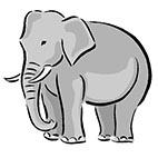 Раскраски дикие животные распечатать. Слон